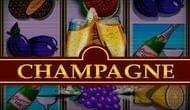 Аппарат Шампанское