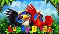 Эмулятор Счастливы Птицы